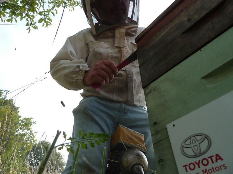 La ruche Toys motors
