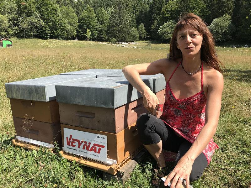 La ruche TRANSPORTS VEYNAT