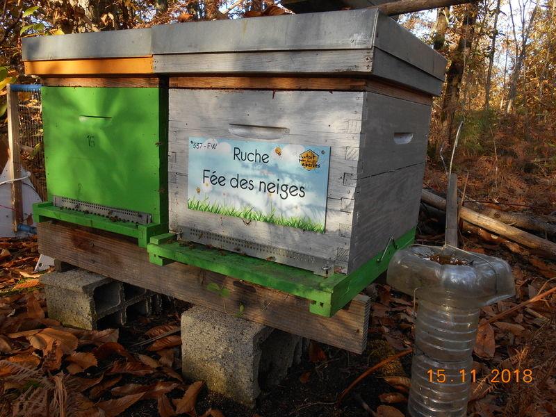La ruche Fée des neiges