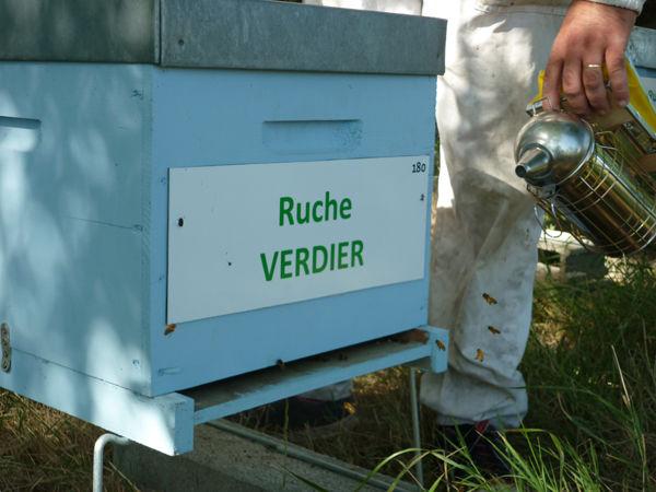 La ruche Verdier