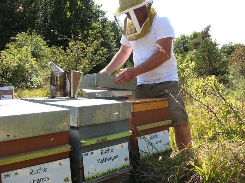 La ruche Matheysine