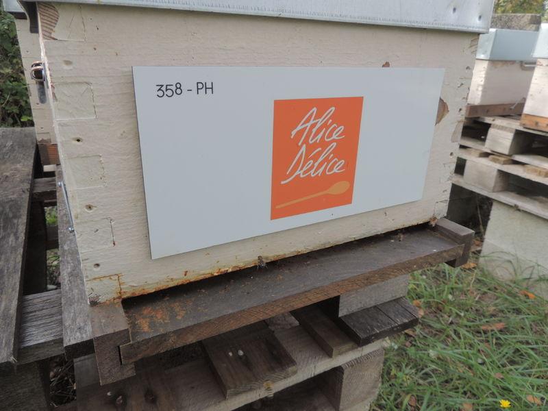 La ruche Alice Délice Montpellier