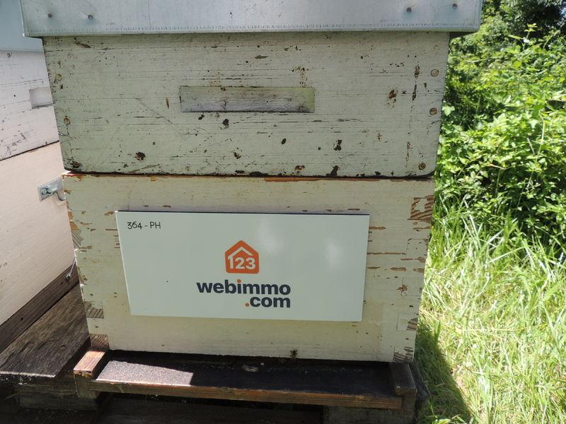 La ruche 123webimmo sète