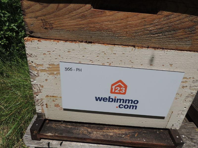 La ruche 123webimmo montpellier est