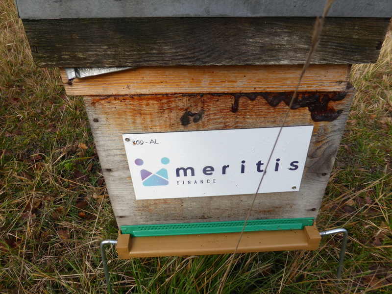La ruche Meritis