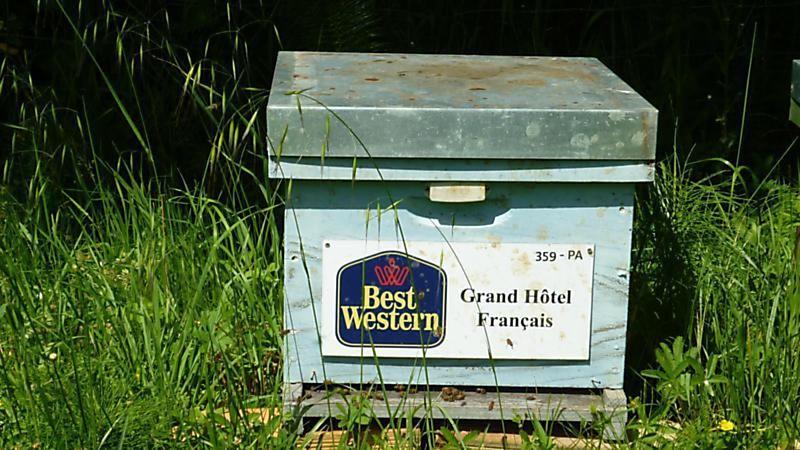 La ruche HOTEL BEST WESTERN GRAND HOTEL FRANCAIS