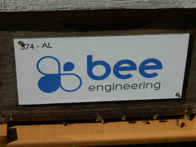 La ruche Bee engineering