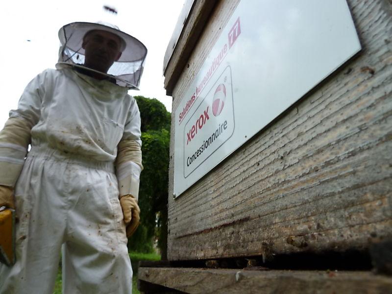 La ruche Solutions bureautique 77