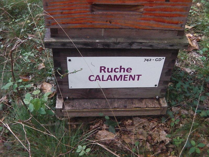 La ruche Calament