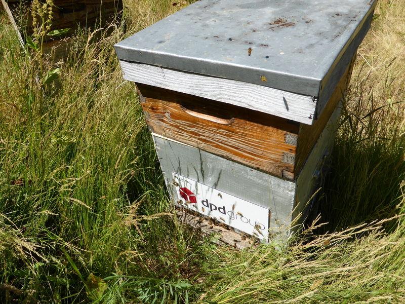 La ruche DPDgroup
