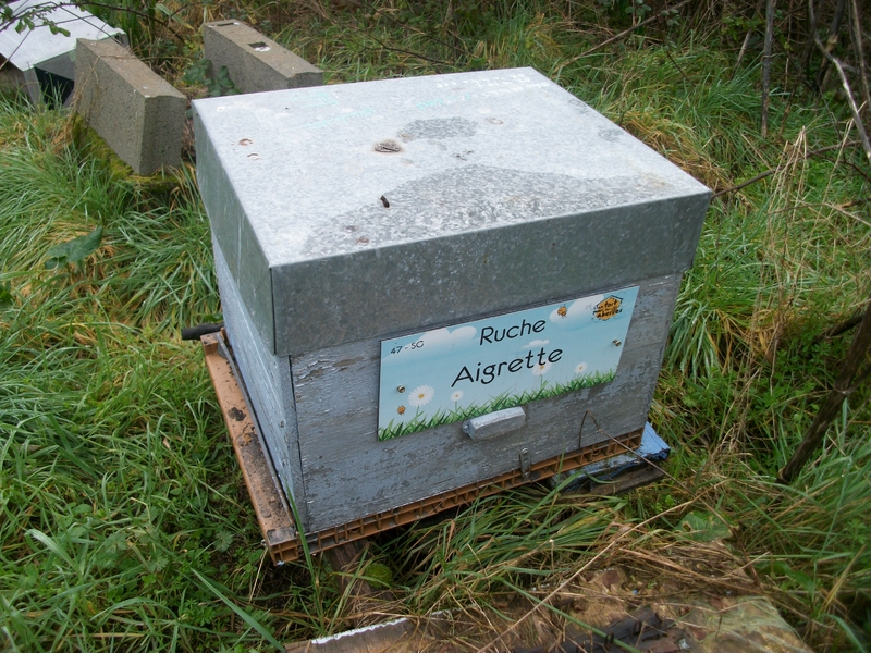 La ruche Aigrette
