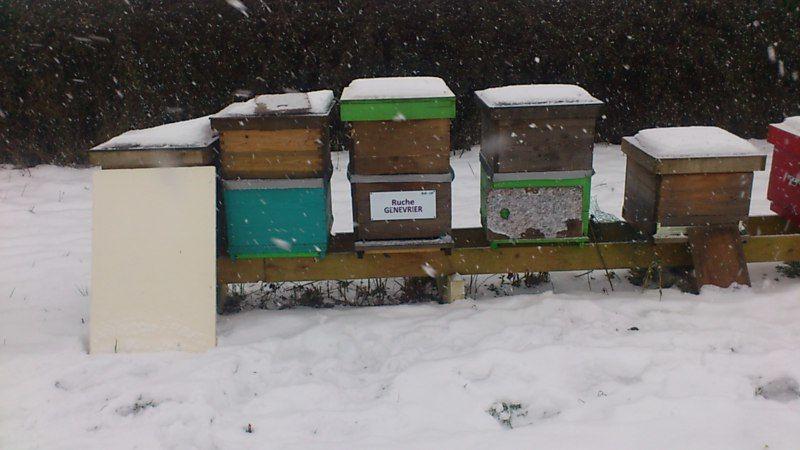 La ruche Genevrier