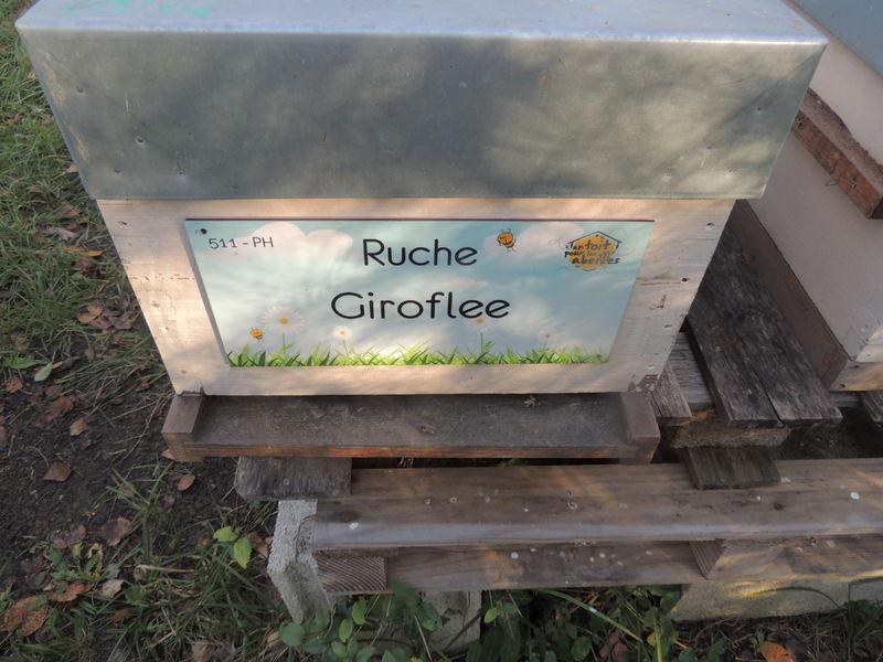 La ruche Giroflee