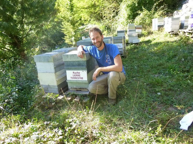 La ruche Lierre terrestre