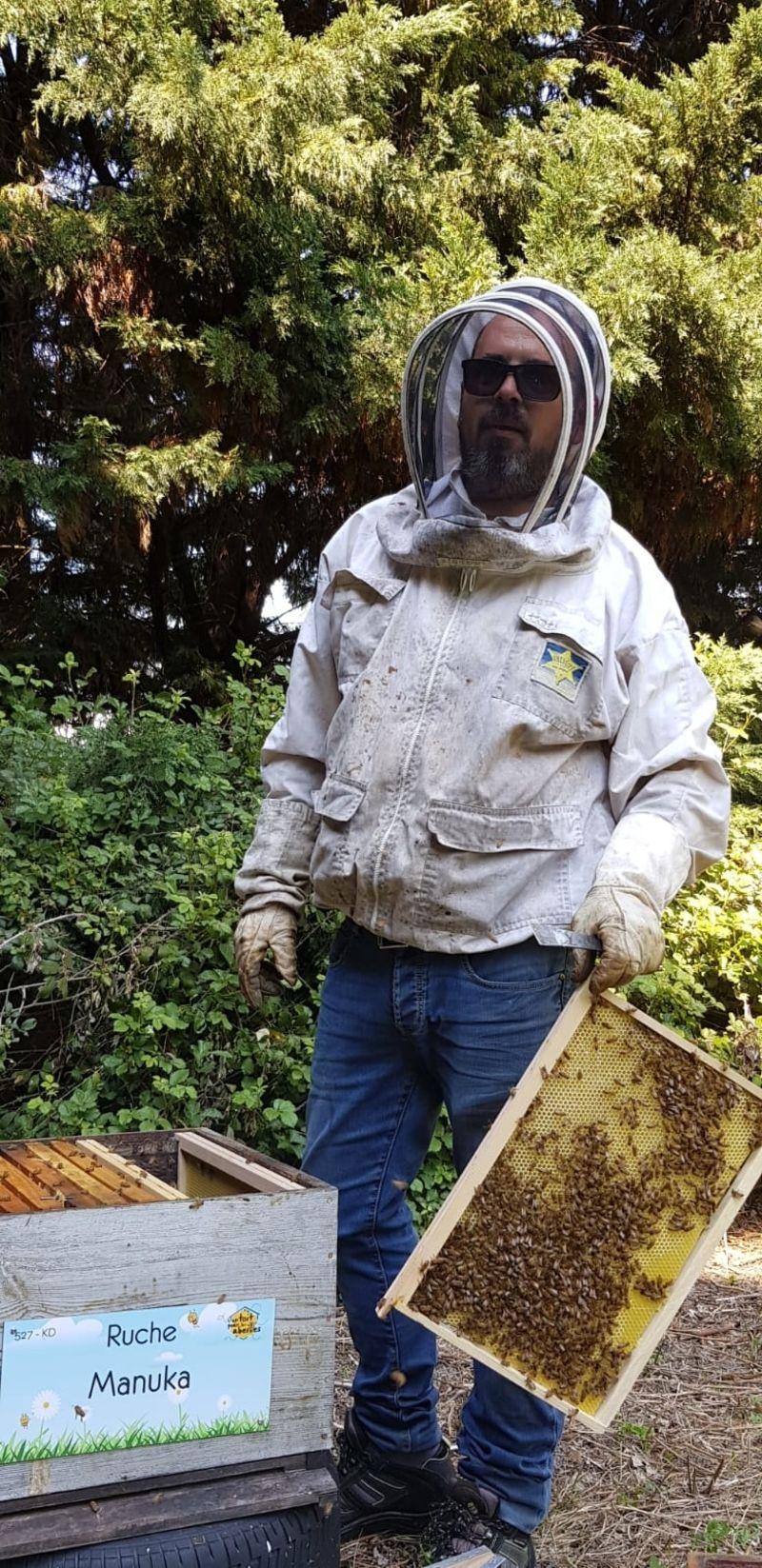 La ruche Manuka