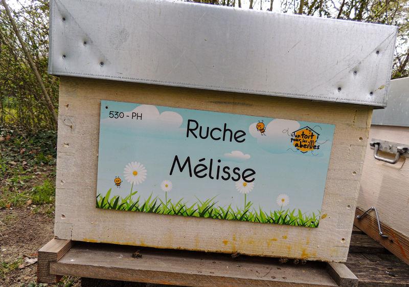 La ruche Mélisse