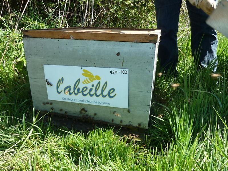 La ruche L ABEILLE