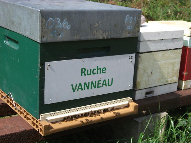 La ruche Vanneau