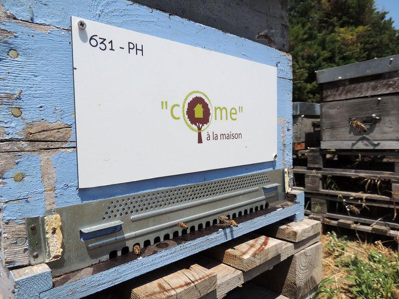 """La ruche """"Come"""" à la maison"""