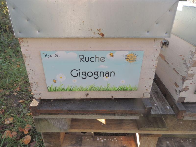 La ruche Gigognan