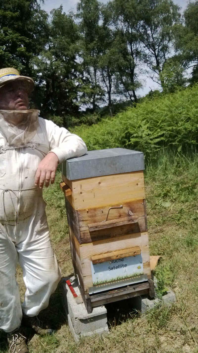 La ruche Satellite