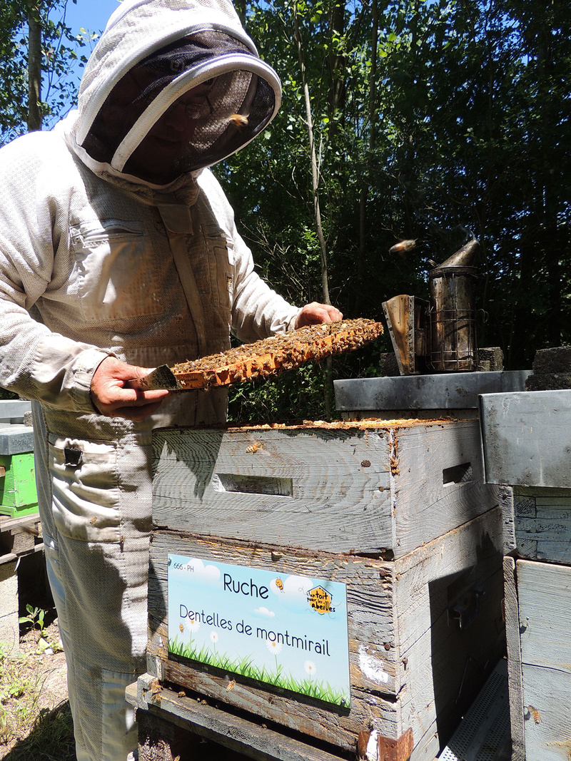 La ruche Dentelles de montmirail