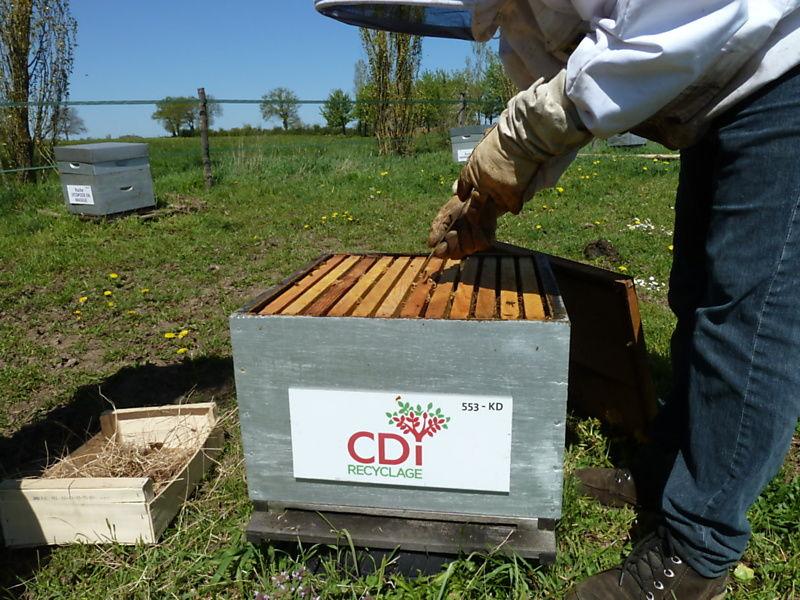 La ruche PAPREC FRANCE SA