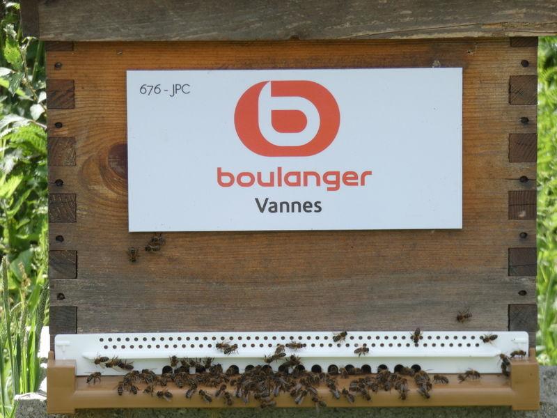 La ruche BOULANGER VANNES