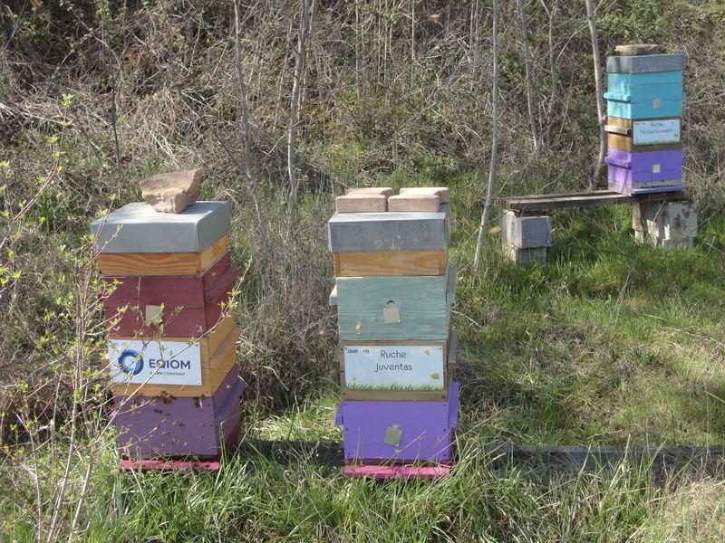 La ruche Eqiom granulats