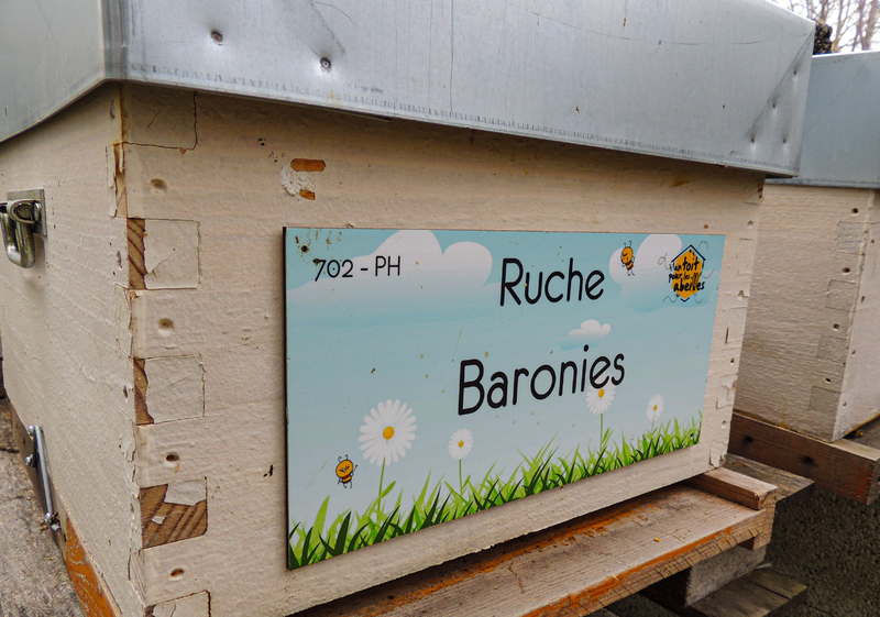 La ruche Baronies