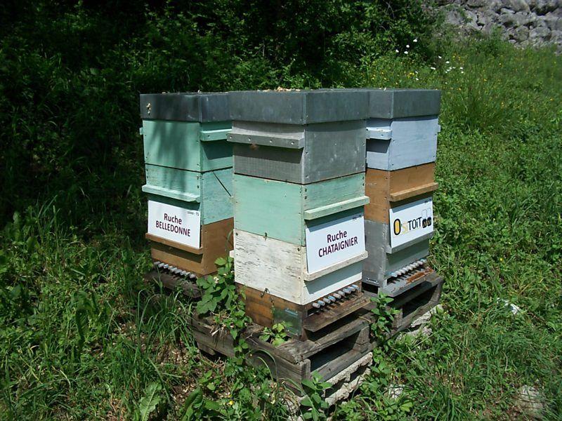 La ruche Belledonne