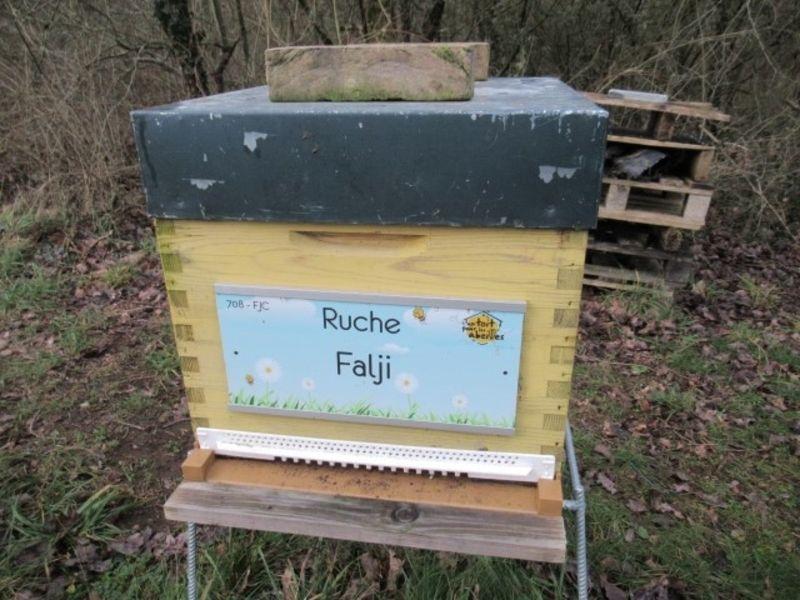 La ruche Falji
