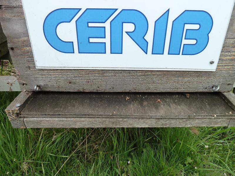 La ruche CERIB