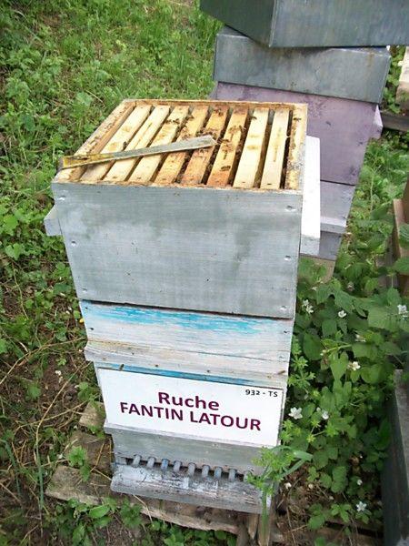 La ruche Fantin latour
