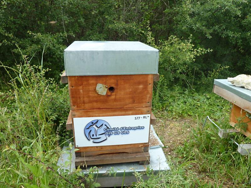 La ruche CE GEODIS