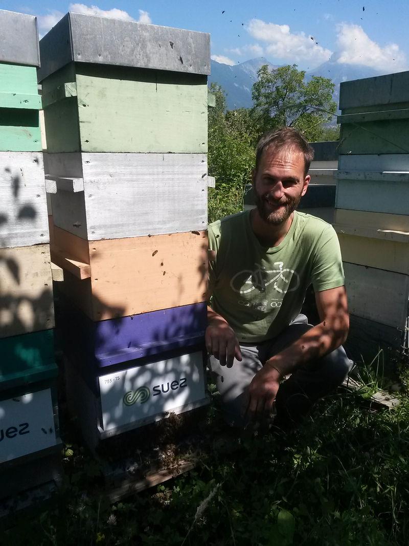 La ruche Terrial