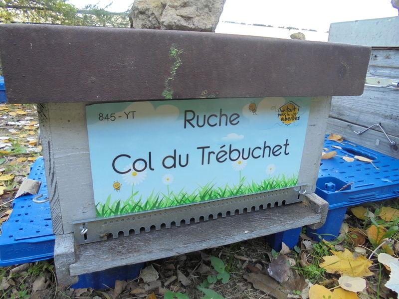 La ruche Col du Trébuchet