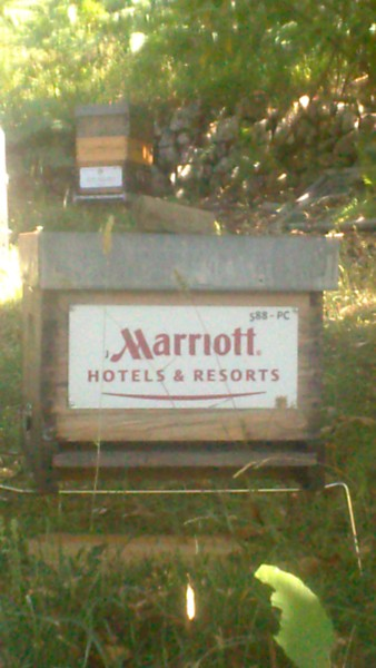 La ruche HOTELS MARRIOTT