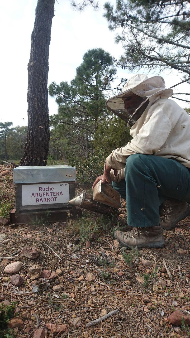 La ruche Argentera-Barrot