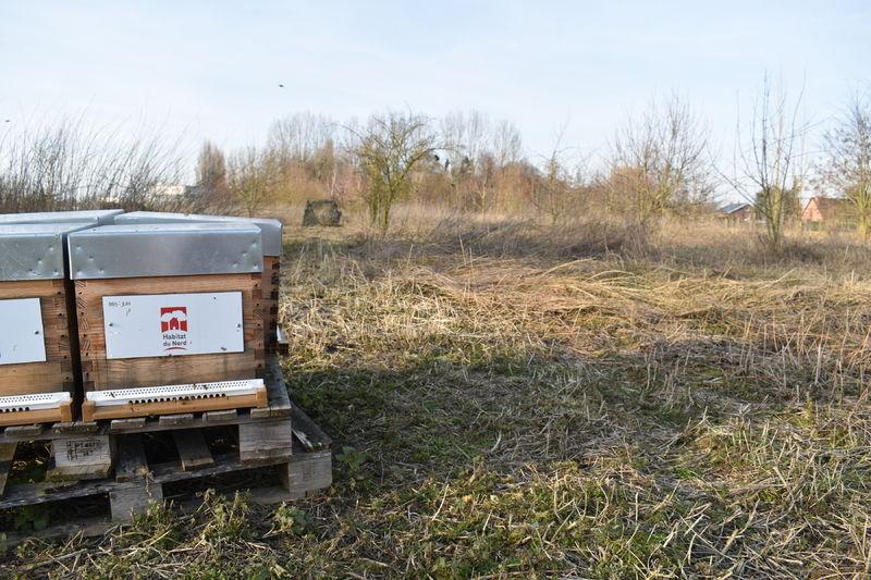 La ruche MON ABRI GROUPE
