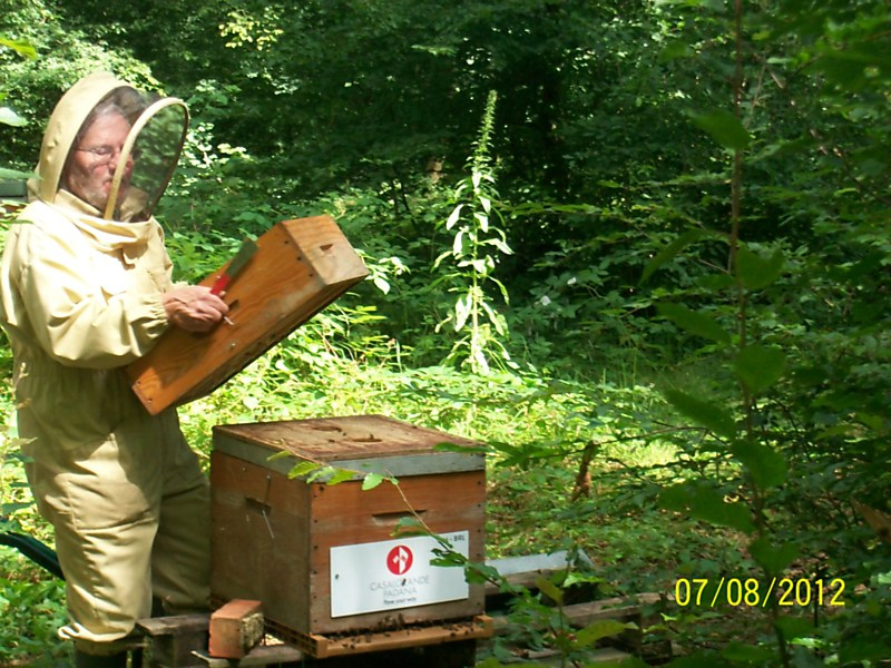 La ruche CEDREX SPRL (CASALGRANDE PADANA)