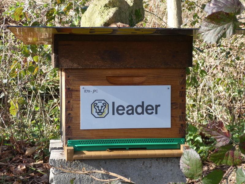 La ruche GROUPE LEADER