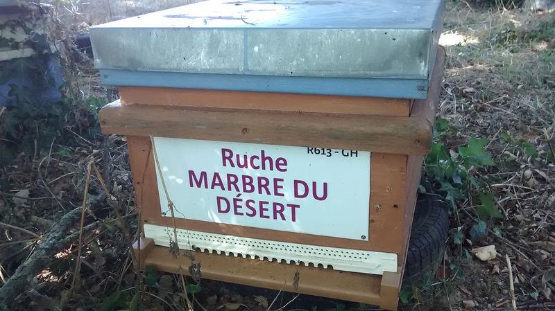 La ruche Marbre du désert
