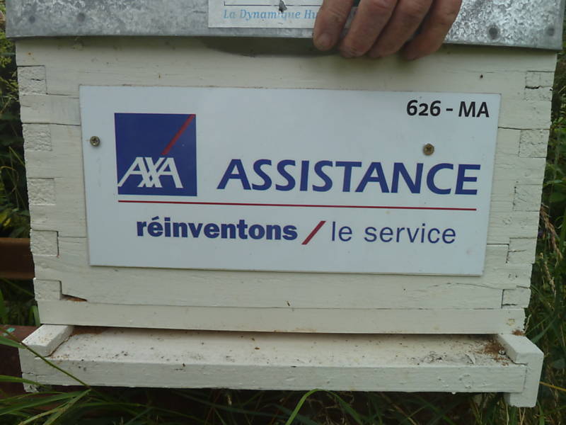 La ruche Axa assistance france
