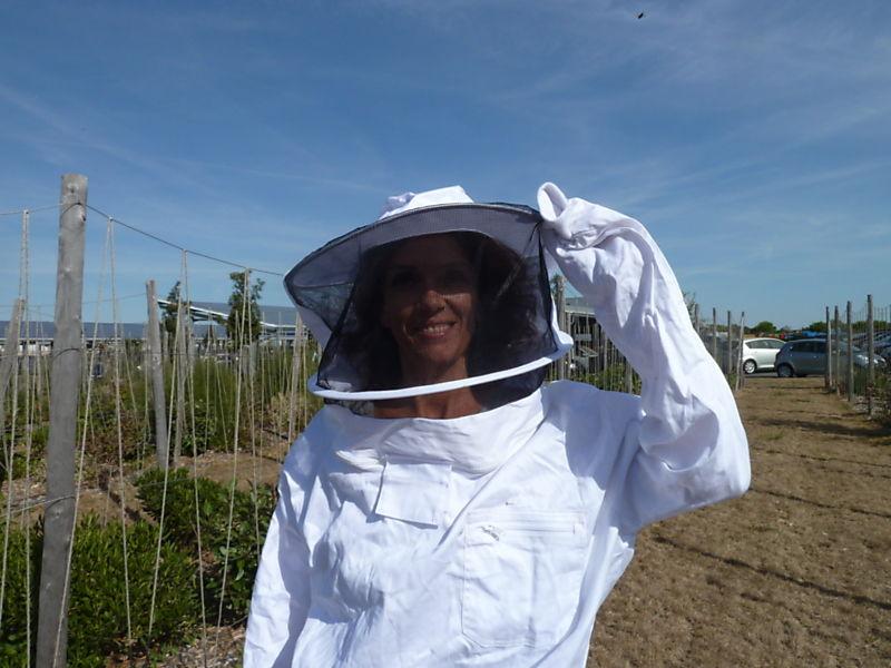 La ruche Centre porsche