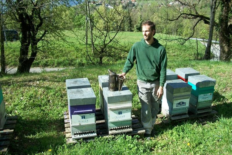 La ruche Editions Tissot