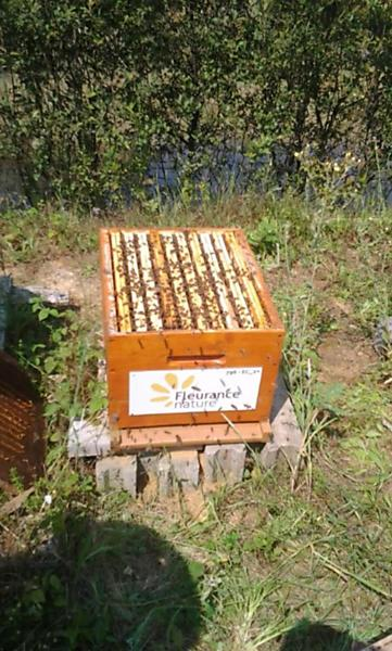 La ruche FLEURANCE NATURE
