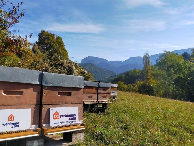 La ruche 123webimmo Alpilles et Pays d