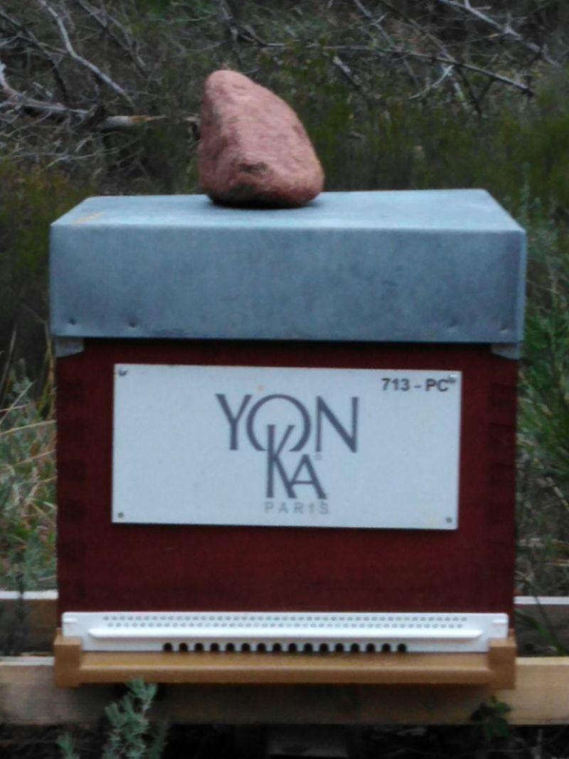 La ruche YON-KA