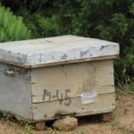 130-ruches